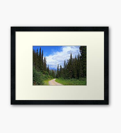 Bear Country (Big Mountain Ski Resort) Framed Print