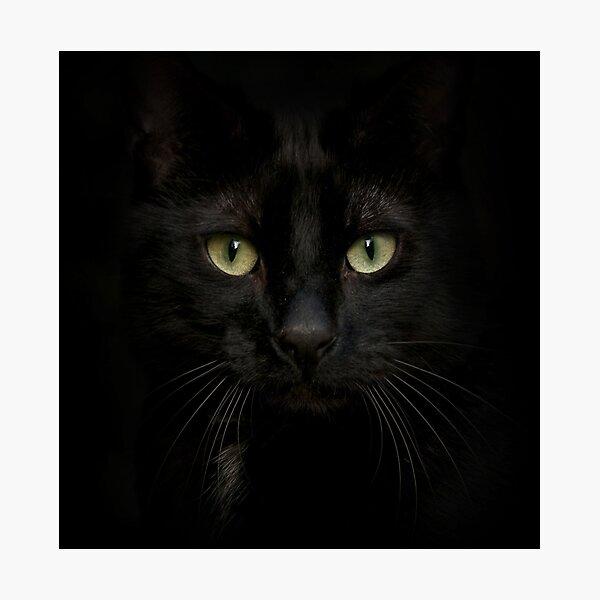 Black on Black.. Photographic Print
