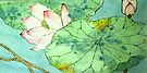 Shy Lotus   by bettymmwong