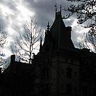 Gothic Sky by Hank Eder