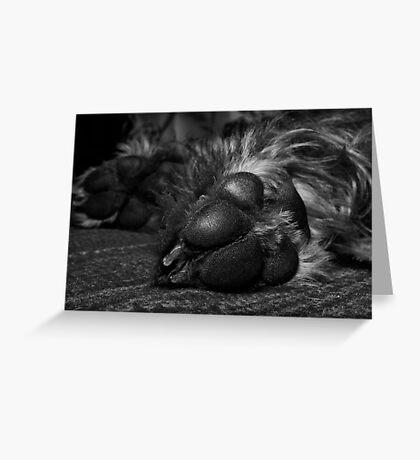 Póg's Paws Greeting Card