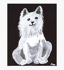 Furry Pet Photographic Print