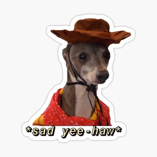 Sad Boy Cowboy Sticker