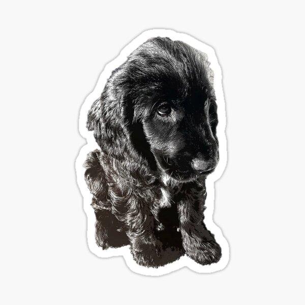 English Cocker Spaniel Black Puppy Dog - Adorable! Sticker