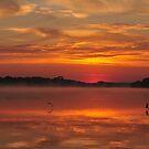 Glorious morning by NicoleBPhotos