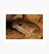 Bilingual Froglet Art Print