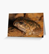 Bilingual Froglet Greeting Card