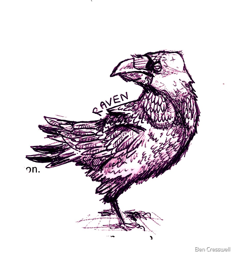 Raven by Ben Cresswell