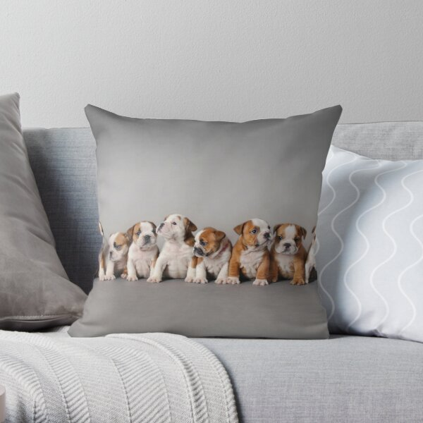 English bulldog puppies Throw Pillow