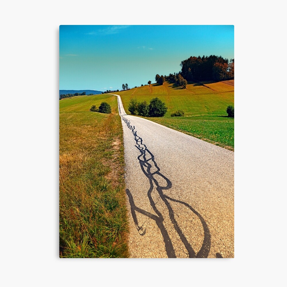 Traces of the tarmac worms Canvas Print