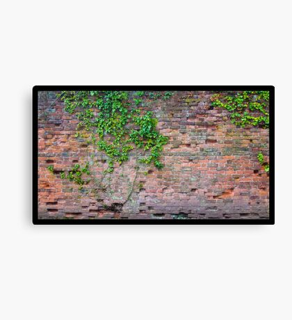 Decaying brickwall Canvas Print