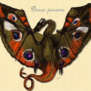 Buckeye Butterfly Dragon: Draco Junonia by Muninn