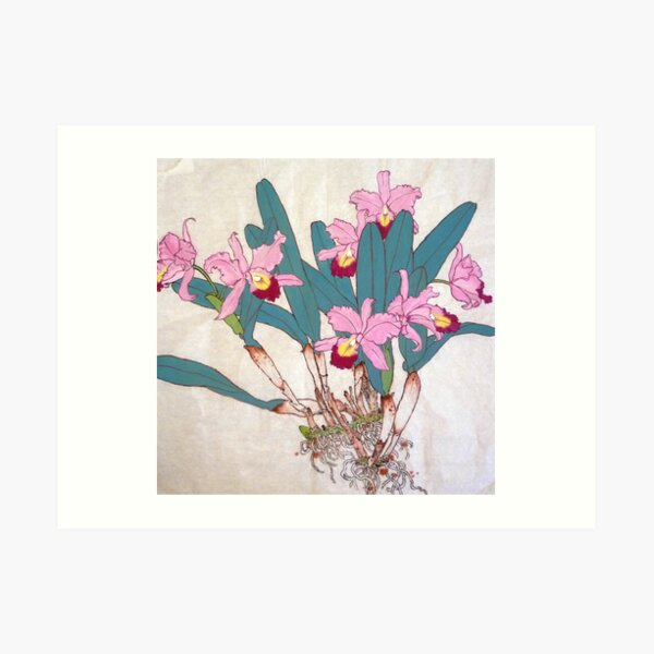 Orchids with roots  Art Print
