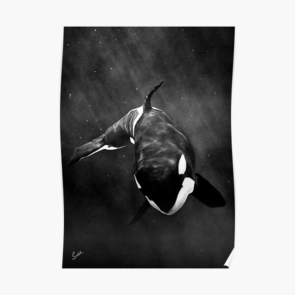 The Orca Poster