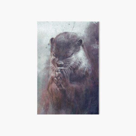 Meditierender Otter (farbig) Galeriedruck