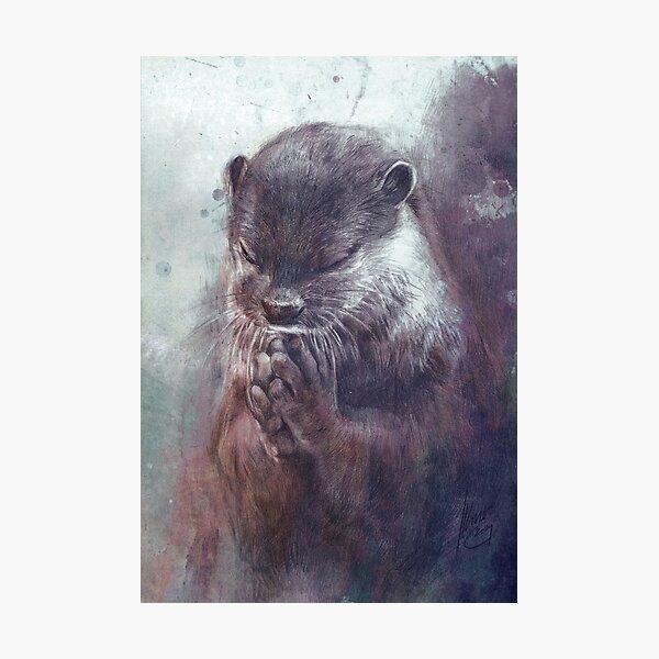 Meditierender Otter (farbig) Fotodruck