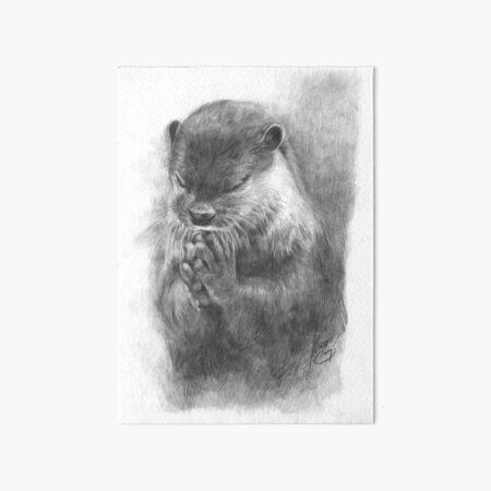 Meditierender Otter (schwarz-weiß) Galeriedruck