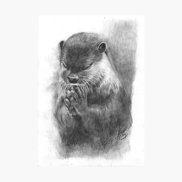 Meditierender Otter (schwarz-weiß) Fotodruck