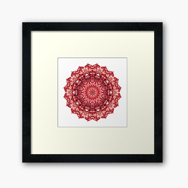 Mandala 023 Framed Art Print