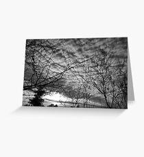 Blanketing The Sky Greeting Card