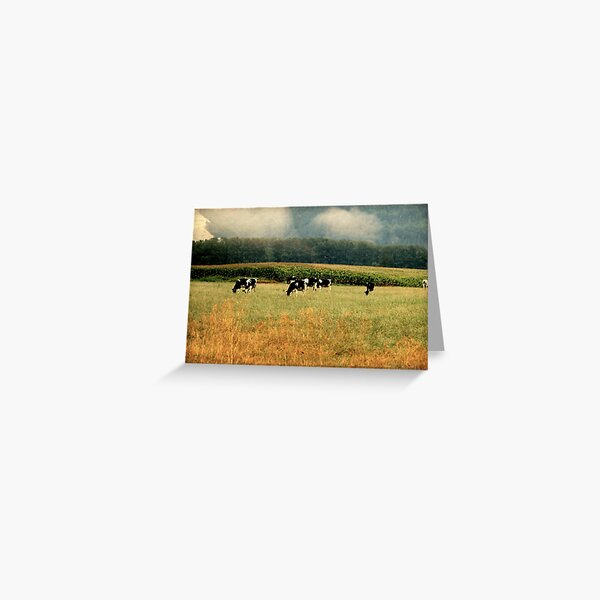 Holsteins in the Country Greeting Card