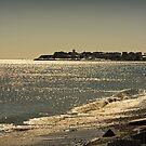 View of Hampton Coast by Diana Nault