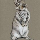 Sitting Bunny by Charlotte Yealey
