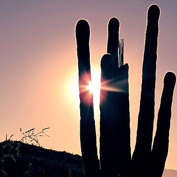 Desert Morning by Marker2ndLT
