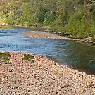 River View by mspfoto