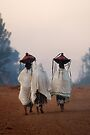 Early Morning in Bahir Dah. by Heather Prince