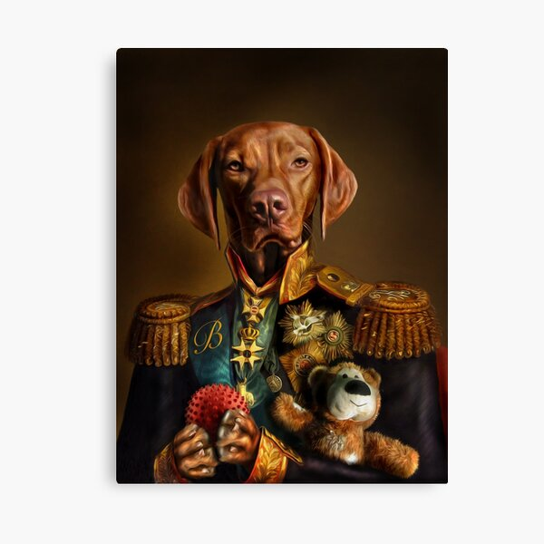 Bertie the Hungarian Vizsla - Dog Portrait Canvas Print