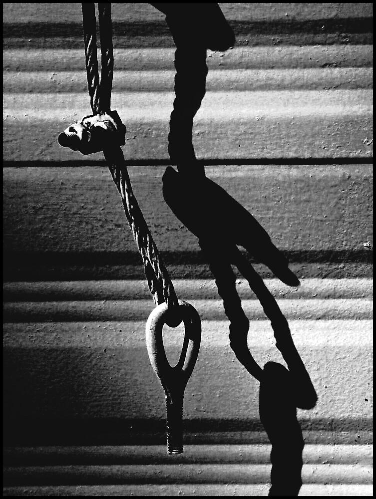 Tie down : )Trailer Park America Series)  by Isa Rodriguez