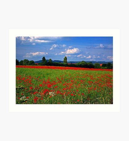 Poppy Field  (Early May) Art Print