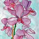 Orchid Flower in Watercolor by leororing