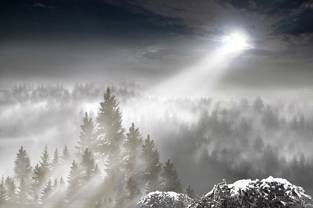 There Will Be Light by Igor Zenin
