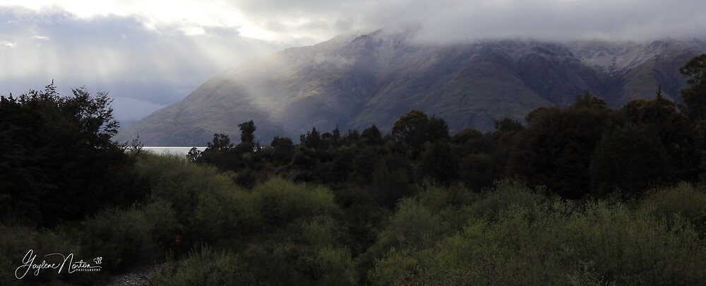 moody New Zealand gorgeousness by Gaylene Norton