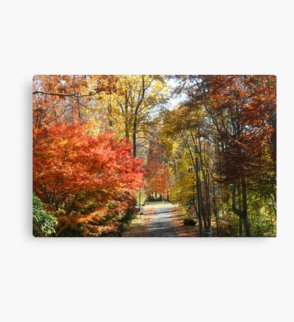 Brilliant Colors on a Fall Day Canvas Print