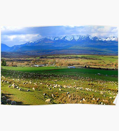 Te Anau Downs. South Island, New Zealand. Poster