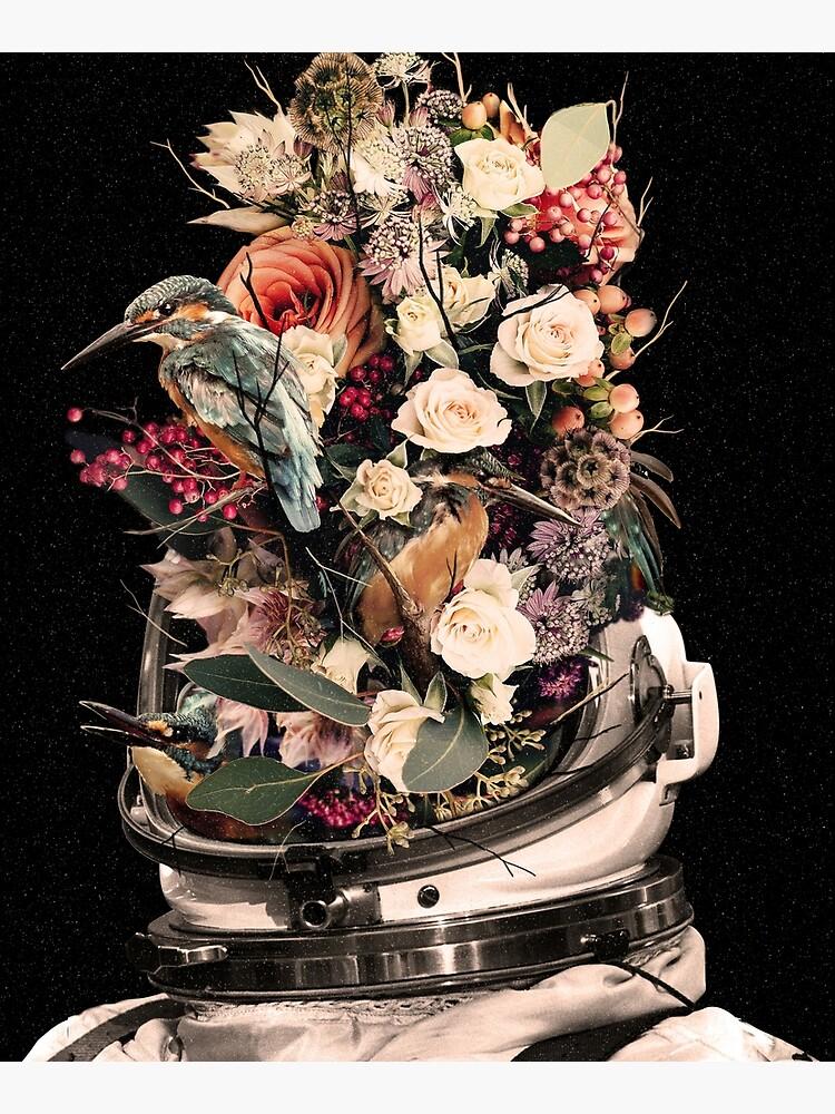 Bloom by nicebleed