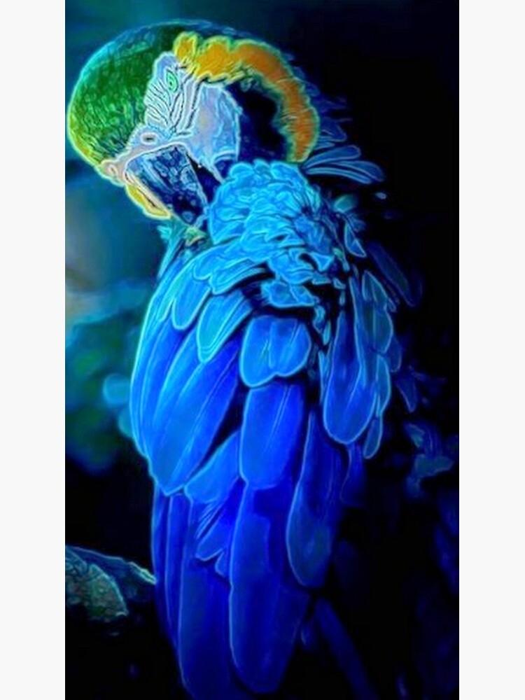 Blue Bird  by michaeltodd