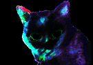 Black Cat, In Full Color by Etakeh