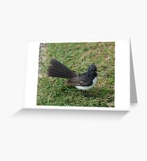 SC ~ WO ~ FANTAIL ~ Wille Wagtail by David Irwin 071119 Greeting Card