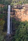 Fitzroy Falls front on by Ian Fegent