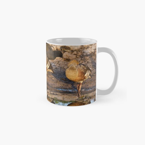 NT ~ WATERFOWL ~ Plumed Whistling Duck and Dusky Moorhen by David Irwin 071119 Classic Mug