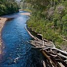 From A Tahune Swinging Bridge. by mspfoto