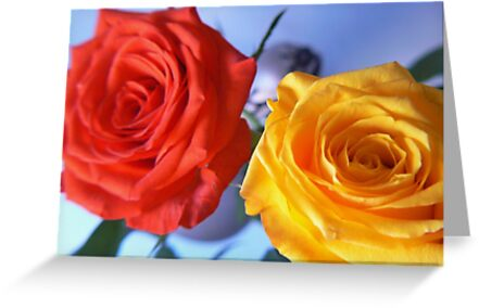 red and yellow by LisaBeth