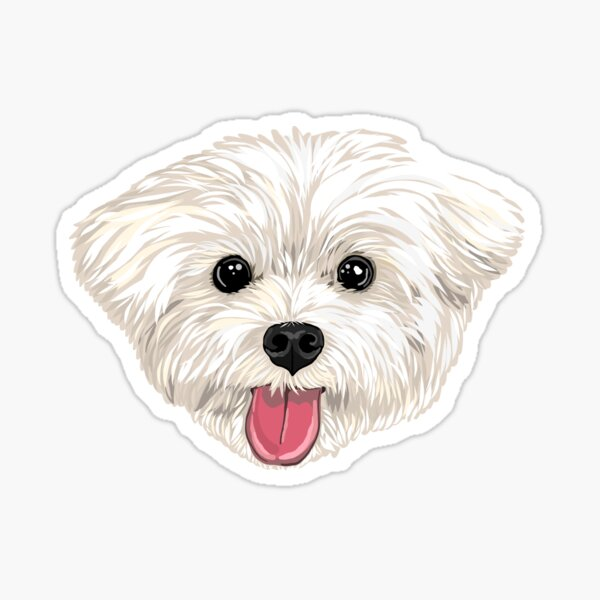 Maru the Maltese (face only) Sticker