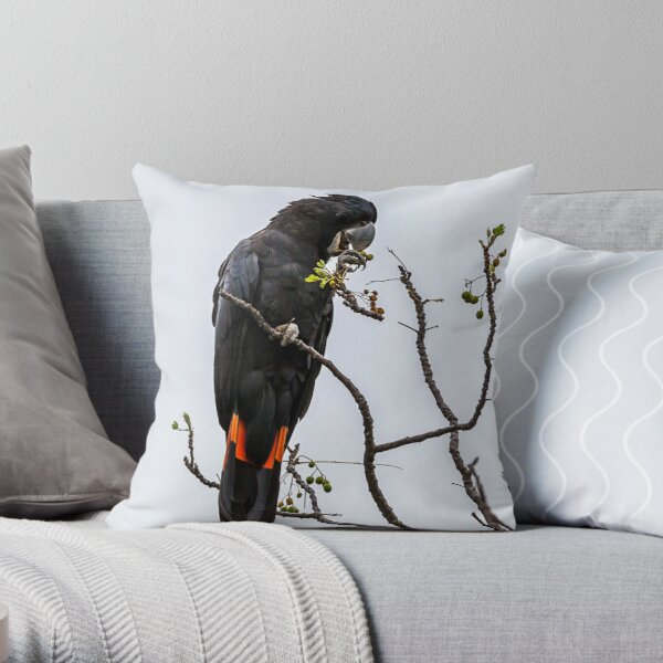 Animal Collection - Black Cockatoo Red Tail Throw Pillow