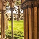 Cathedral Cloisters by Dave Hare