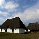 Peasant houses of 19th century,Skanzen,town Szentendre,Hungary,Europe2011 by ambrusz